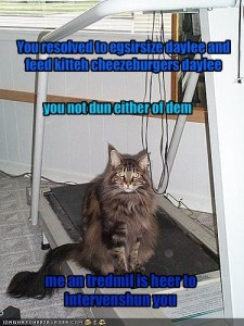 intervention lolcat