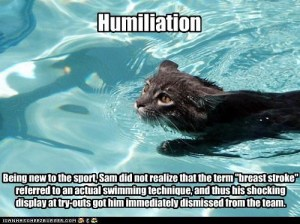 swim lolcat