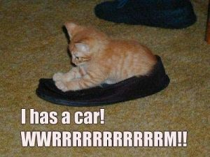 car-lolcat