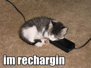 funnyt-lolcat-recharging