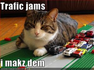 traffic-jam-lol-cat